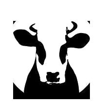meyenhorst logo